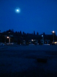 moonshinebeach